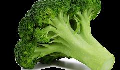 Brocolli1